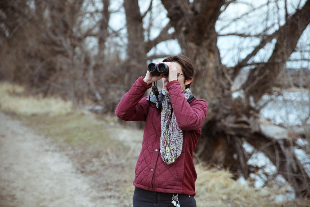 Beginner's Guide To Birdwatching