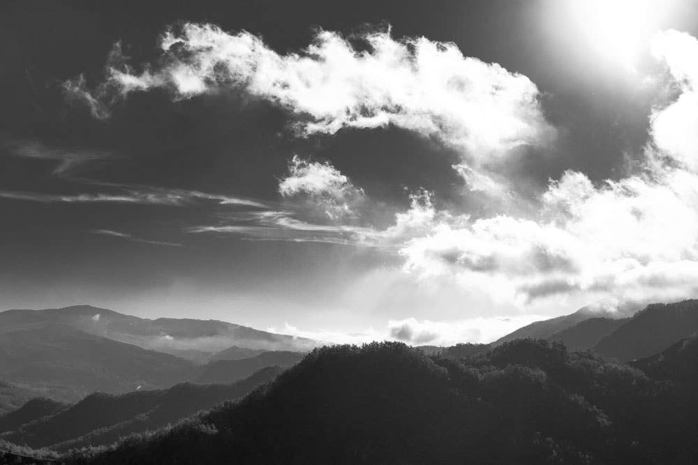 Black and White Photography for Beginners