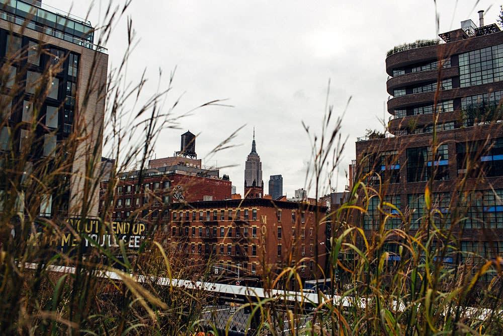 The Highline, New York City, 2015